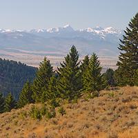 Bill and Sally Feninger's land in Bridger Mountains above Bozeman Montana.