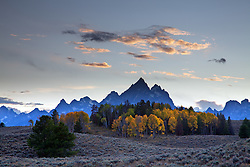 """Golden Aspens,sagebrush hills and the Grand Tetons in Grand Teton National Park.<br /> <br /> For production prints or stock photos click the Purchase Print/License Photo Button in upper Right; for Fine Art """"Custom Prints"""" contact Daryl - 208-709-3250 or dh@greater-yellowstone.com"""