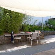Modern Garden 377