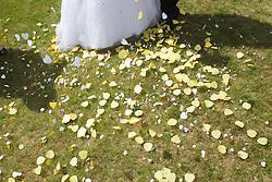 Confetti on ground at wedding.