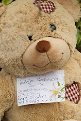 © Licensed to London News Pictures. 27/06/2012. Oldham , UK . A large explosion , believed to be caused by gas , has brought down at least one house in an Oldham terrace. A makeshift shrine dedicated to 2 year old Jamie Heaton who was killed in the blast including messages of tribute , flowers and a teddy bear . Photo credit : Joel Goodman/LNP