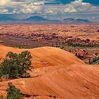 A maze of sandstone canyons spreads north of Navajo Mountain in southern Utah.