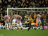 Photo: Rich Eaton.<br /> <br /> Wolverhampton Wanderers v Sunderland. Coca Cola Championship. 24/11/2006. Jemal Johnson of Wolves pictured after scoring his late first half long range goal