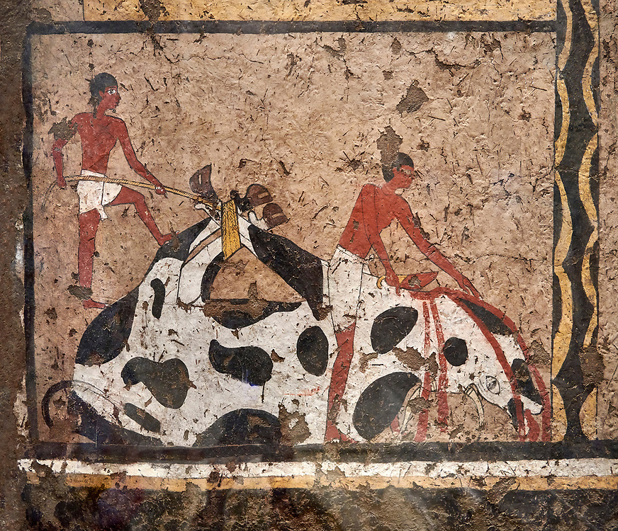 Ancient Egyptian wall paintings of the Tomb of Iti and Neferu, Ritual slaughter scene Scene, Thebes, First Intermediate Period (2118 – 1980BC). Egyptian Museum, Turin. Schiapelli excavations cat 1434.<br /> <br /> The ritual slaughter scene depicts an ox being held down with blodd being collected in a bowl. These tempera paintings were on a crude mud and straw plaster and were of typical Old Kingdom tombs showing ritual offering scenes. The tomb was partly cut into rock with mud brick walls and vaults. The facade of the tomb had 16 columns looking over a courtyard sloping towards the valley. .<br /> <br /> If you prefer to buy from our ALAMY PHOTO LIBRARY  Collection visit : https://www.alamy.com/portfolio/paul-williams-funkystock/ancient-egyptian-art-artefacts.html  . Type -   Turin   - into the LOWER SEARCH WITHIN GALLERY box. Refine search by adding background colour, subject etc<br /> <br /> Visit our ANCIENT WORLD PHOTO COLLECTIONS for more photos to download or buy as wall art prints https://funkystock.photoshelter.com/gallery-collection/Ancient-World-Art-Antiquities-Historic-Sites-Pictures-Images-of/C00006u26yqSkDOM