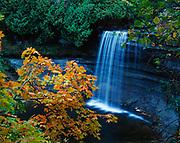 Bridal Veil Falls with autumn colors of sugar maple, Kagawong, Manitoulin Island, Lake Huron, Ontario, Canada.