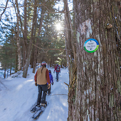 Snowshoeing on the Upper Works Trail, Tahawus Tract, Newcomb, New York. Adirondack Mountains.