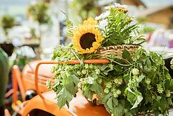 THEMENBILD - Blumen auf einem Traktor, aufgenommen am 25. August 2019, Piesendorf, Österreich // Flowers on a tractor on 2019/08/25, Piesendorf, Austria. EXPA Pictures © 2019, PhotoCredit: EXPA/ Stefanie Oberhauser