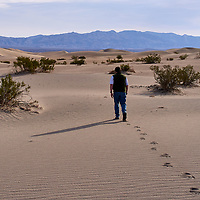 20110324-Mesquite Flats