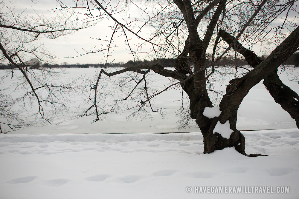 The area around the Tidal Basin and West Potomac Park in the aftermath of Washington DC's blizzard of January 2016, dubbed by the locals as Snowzilla.
