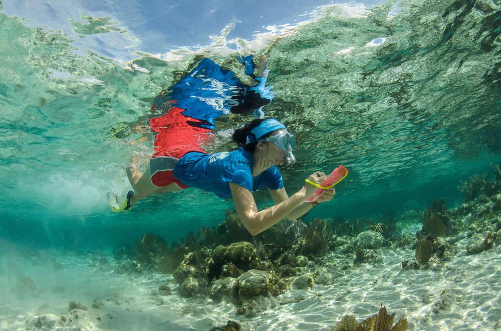 Cecilia Guerrero monitoring<br /> MAR Alliance Staff<br /> Hol Chan Marine Reserve<br /> Ambergris Caye<br /> Belize<br /> Central America
