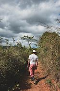 A farmer walks on a path between fields in Viñales, Cuba. December 9, 2014