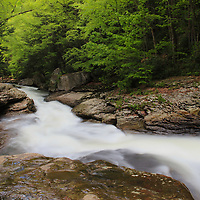 """""""Meadow Run"""" 2<br /> <br /> Scenic Meadow Run in Ohiopyle State Park located in the Laurel Highlands of PA.<br /> <br /> Laurel Highlands by Rachel Cohen"""