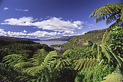 Lake Tarawera, overlooked from the descend towards the lake when coming from Rotorua, with the Hot Water Beach bay in the foreground.