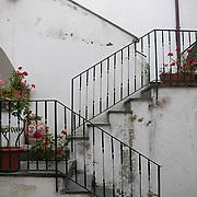 Stairs. Ravello, Italy