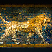A mosaic of glazed bricks depicting a lion that formed part of a larger facade to one of Nebuchadnezzar II's buildings in Babylon. It is on display at the British Museum. The British Museum in downtown London us dedicated to human history and culture and has about 8 million works in its permanent collection.