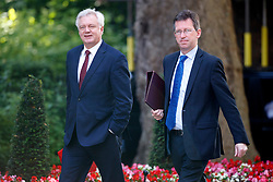 © Licensed to London News Pictures. 04/07/2017. London, UK. Secretary of State for Exiting the European Union DAVID DAVIS and Attorney General JEREMY WRIGHT attend a cabinet meeting in Downing Street, London on Tuesday, 4 July 2017.Photo credit: Tolga Akmen/LNP