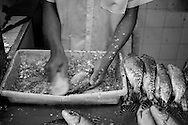 """A young boy descales a fish by scraping a stiff brush the """"wrong"""" way up the side of the fish. He did a fish approximately ever 10 seconds. Seen in the old covered market on the riverside in Manaus, Amazonia, Brazil. Photo by Andrew Tobin/Tobinators Ltd"""