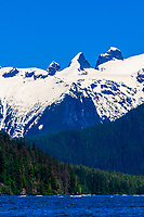 LeConte Bay (near LeConte Glacier), between Petersburg and Wrangell, southeast Alaska USA