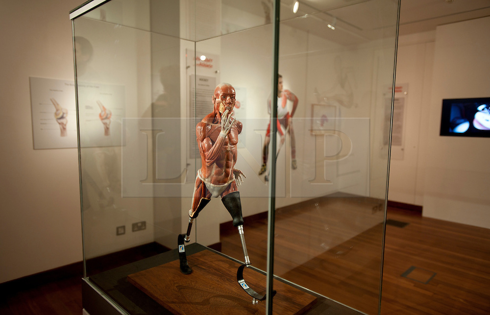 © Licensed to London News Pictures. 12/03/2012. London, UK. The model of sprinter Richard Whitehead, made by Richard Neave and Denise Smith. The model is anatomically correct and is designed to show the difference in physiology of an athlete that uses prosthetic limbs. Preview of the Royal College of Surgeons' 'Anatomy of an Athlete' exhibition. The exhibition opens on March 13 and looks at the latest innovations in orthopaedic surgery, prosthetics and training in creating and maintaining elite athletes. Photo credit : Spike Johnson/LNP