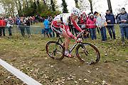 Friday 1 November 2013: Tim Merlier in action during the Koppenbergcross 2013 Beloften race. Copyright 2013 Peter Horrell