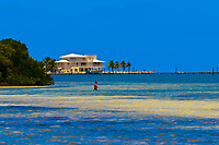 Anne's Beach, Islamorada Key, Florida Keys, Florida USA