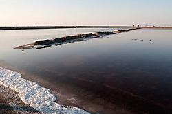 Il complesso produttivo delle saline è situato nel comune italiano di Margherita di Savoia (nome dato dagli abitanti in onore alla regina d'Italia che molto si adoperò nei confronti dei salinieri) nella provincia di Barletta-Andria-Trani in Puglia. Sono le più grandi d'Europa e le seconde nel mondo, in grado di produrre circa la metà del sale marino nazionale (500.000 di tonnellate annue).All'interno dei suoi bacini si sono insediate popolazioni di uccelli migratori e non, divenuti stanziali quali il fenicottero rosa, airone cenerino, garzetta, avocetta, cavaliere d'Italia, chiurlo, chiurlotello, fischione, volpoca..Vista di un bacino per la produzione del sale; in basso a sinistra la schiuma biancastra che l'alta concentrazione di sale nell'acqua provoca.