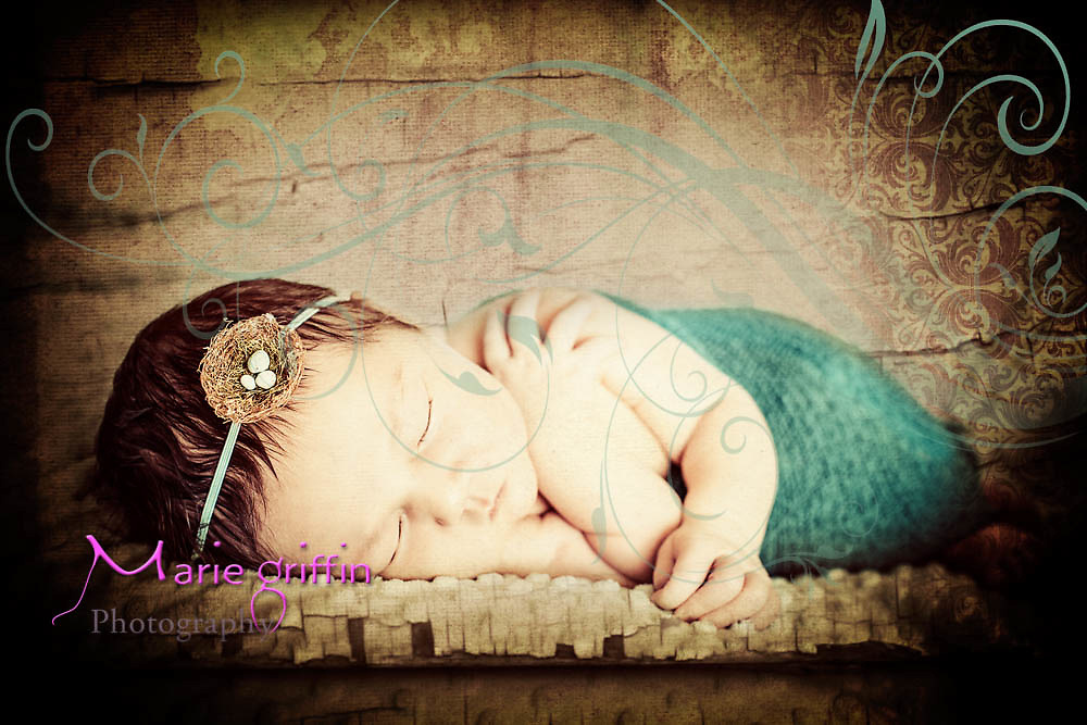 Paige Elizabeth Cook born Sept. 24, 2015 at 3:06pm 9.5 lbs and 21 inches long. Newborn photo session and family with sister Emma on Sept. 29, 2015.<br /> Photography by: Marie Griffin Dennis/Marie Griffin Photography<br /> mariegriffinphotography.com<br /> mariefgriffin@gmail.com