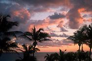 Sunrise behind palm trees on Harbour Island, Eleuthera, The Bahamas