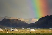 Mongolie, Province de Bayan Olgii, Campement de yourte, // Mongolia, Bayan Olgii province, Yurt camp.
