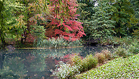 The first autumn colors at The Pool in Central Park.