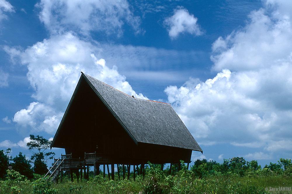 Kalimatan, Borneo, Indonesia, Asia
