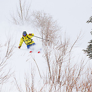 Forrest Jillson skis through powder encrusted willows inbounds at JHMR.