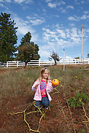 The Hangtown Kid Ranch in Camino, California is part of Apple Hill.