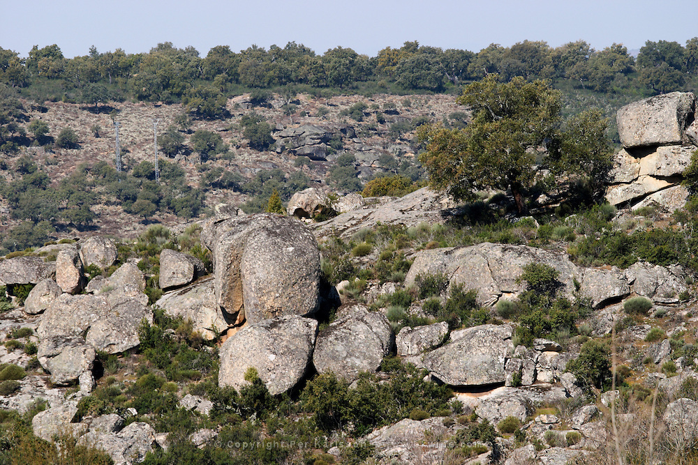 boulders in the fields Bodega La Setera, DO Arribes del Duero spain castile and leon