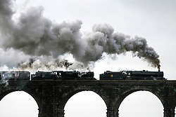 © Licensed to London News Pictures. 23/01/2016. Ribblehead UK. Photograph show two historic Black 5 locomotives pulling the Cumbrian Mountain express train over the Ribblehead Viaduct making it the first steam train of the year to travel over the historic viaduct.Photo credit: Andrew McCaren/LNP