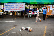 """01 FEBRUARY 2014 - BANGKOK, THAILAND: A dog rolls around in front of a polling place while an elections worker prepares to open the polls in Bangkok. Thais went to the polls in a """"snap election"""" Sunday called in December after Prime Minister Yingluck Shinawatra dissolved the parliament in the face of large anti-government protests in Bangkok. The anti-government opposition, led by the People's Democratic Reform Committee (PDRC), called for a boycott of the election and threatened to disrupt voting. Many polling places in Bangkok were closed by protestors who blocked access to the polls or distribution of ballots. The result of the election are likely to be contested in the Thai Constitutional Court and may be invalidated because there won't be quorum in the Thai parliament.    PHOTO BY JACK KURTZ"""