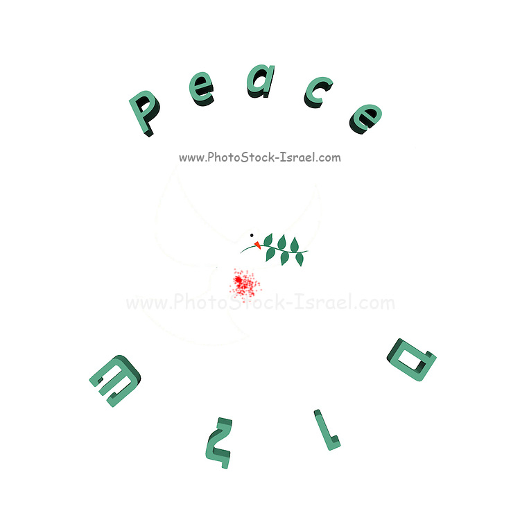 Famous quotes series: Bloody Peace - Peace in English and Hebrew with white dove and olive leaf the dove is wounded