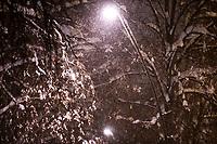 Bialystok, 16.01.2021. Gwaltowny atak zimy, w ciagu paru godzin przybylo kilkanascie centymetrow sniegu N/z osniezone drzewa fot Michal Kosc / AGENCJA WSCHOD