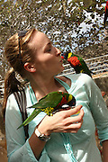 woman with parrots in a bird sanctuary photographed in St Thomas, US Virgin Islands, Caribbean