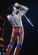 LOS ANGELES, CA - FEBRUARY 14: Freddie Mercury of Queen in concert at The Forum on February 14, 1980 in Los Angeles, California.