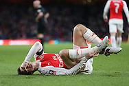 Laurent Koscielny of Arsenal reacts in pain after Andre Gray of Burnley stamps on the Arsenal players foot. The Emirates FA cup, 4th round match, Arsenal v Burnley at the Emirates Stadium in London on Saturday 30th January 2016.<br /> pic by John Patrick Fletcher, Andrew Orchard sports photography.