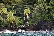 Tavoro National Park, Taveuni, Fiji