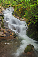 Cascade along Frey Creek, Feather Falls Scenic Area, Plumas National Forest, Butte County, California
