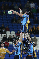 Cardiff Blues v Australia at the Cardiff City Stadium on Tuesday 24th Nov 2009. pic by Andrew Orchard, Andrew Orchard sports photography Scott Morgan wins a lineout ball for the Cardiff Blues.
