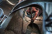 Photo by David Stubbs<br /> ©David Stubbs<br /> www.davidstubbs.com