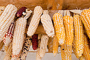 """26 APRIL 2005 - SAN CRISTOBAL DE LAS CASAS, CHIAPAS, MEXICO: Corn drying under the eaves of a home in the Chumalan Indian community of Ucuntic  near San Cristobal de las Casas, Chiapas, Mexico. The Catholic Church in the Chiapas highlands is facing a threat from evangelical Protestant churches, which are experiencing explosive growth, and from """"traditionalist"""" Catholic churches, which are not affiliated with the San Cristobal diocese and are controlled by local politicians and powerful indigenous leaders affiliated with the politicians. The traditionalists burn down churches and chapels affiliated with the diocese, threaten the priests and put indigenous men who worship with the diocese in jail.  PHOTO BY JACK KURTZ"""
