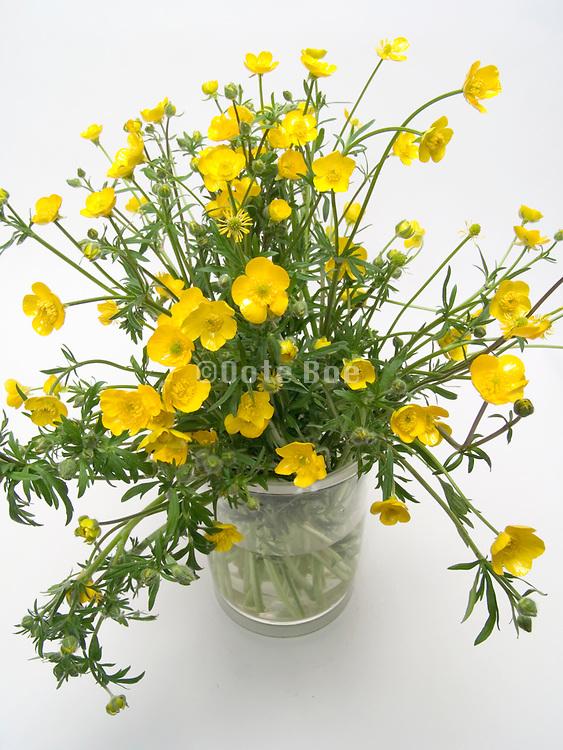 a bouquet of buttercup flowers