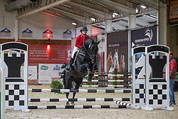 133, Qalisto 28<br /> Hengstenkeuring BWP- Azelhof - Lier  2021<br /> © Hippo Foto - Dirk Caremans<br />  12/04/2021