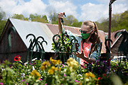 Katrina Short, of Strafford, buys plants in Piermont, N.H., on Tuesday, May 18, 2021, enjoying the recent warm weather and hoping to feel well enough to tend her small vegetable garden this summer. (Valley News - James M. Patterson) Copyright Valley News. May not be reprinted or used online without permission. Send requests to permission@vnews.com.