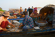 FISHERMEN MEKONG RIVER. South East Asia, Cambodia, Phnom Penh, Mekong River. The Cham fisher people live in various desolated villages along the banks of the Mekong and Tonle Sap rivers. The fisher families live like river gypsy nomads, working and living on their boats, sleeping under a sprung bamboo frame, all their worldly goods stored below deck. They live in extended families, with numerous boats, together for safety. Their diet is rice, vegetables and fish. Their sleek wooden boats are powered by petrol outboard motors with batteries or generators to supply lighting at night. Their fishing technique is laying nets twice or three times per day, which are weighted well below the surface, using old paint aerosal canisters as buoyant floaters, hanging just beneath the surface. These particular fisher families, living at the junction of the Mekong and Tonle Sap rivers, overlooked by Phnom Penh, sell their catch at the Vietnamese market, on the banks of the river. Their life and fortunes are controlled by the cycle of the river. As the river levels drop, so the quantity of fish decreases, until after the heavy floods of the monsoon they fill the river again. They are poor traditional Muslims, marginalised from mainstream society, living a third world life in the immmediate shadow of the first world. The Cham, originally a people of an ancient kingdom called Champa, are a small and disenfranchised community who were disinherited of their land. They are a socially important ethnic group in Cambodia, numbering close to 300,000. The Cham people, live in some 400 villages across Kampong Chnang and Kampong Cham provinces. Their religion is Muslim and their language belongs to the Malayo-Polynesian family. Their livelihoods are as diverse as rice farming, cattle trading, hunting and fishing.///Cham fishermen sell their early morning catch to Vietnamese traders on the shores of the Tonle Sap at Phnom Penh